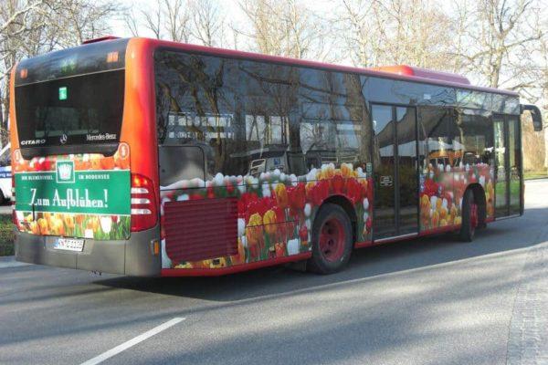bus-beschriftung-7