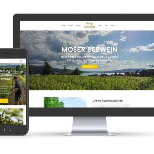 Webauftritt für Moser Seewein