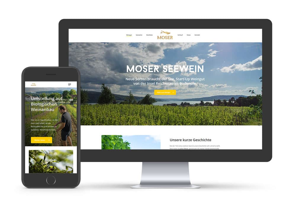 Website Moser Seewein